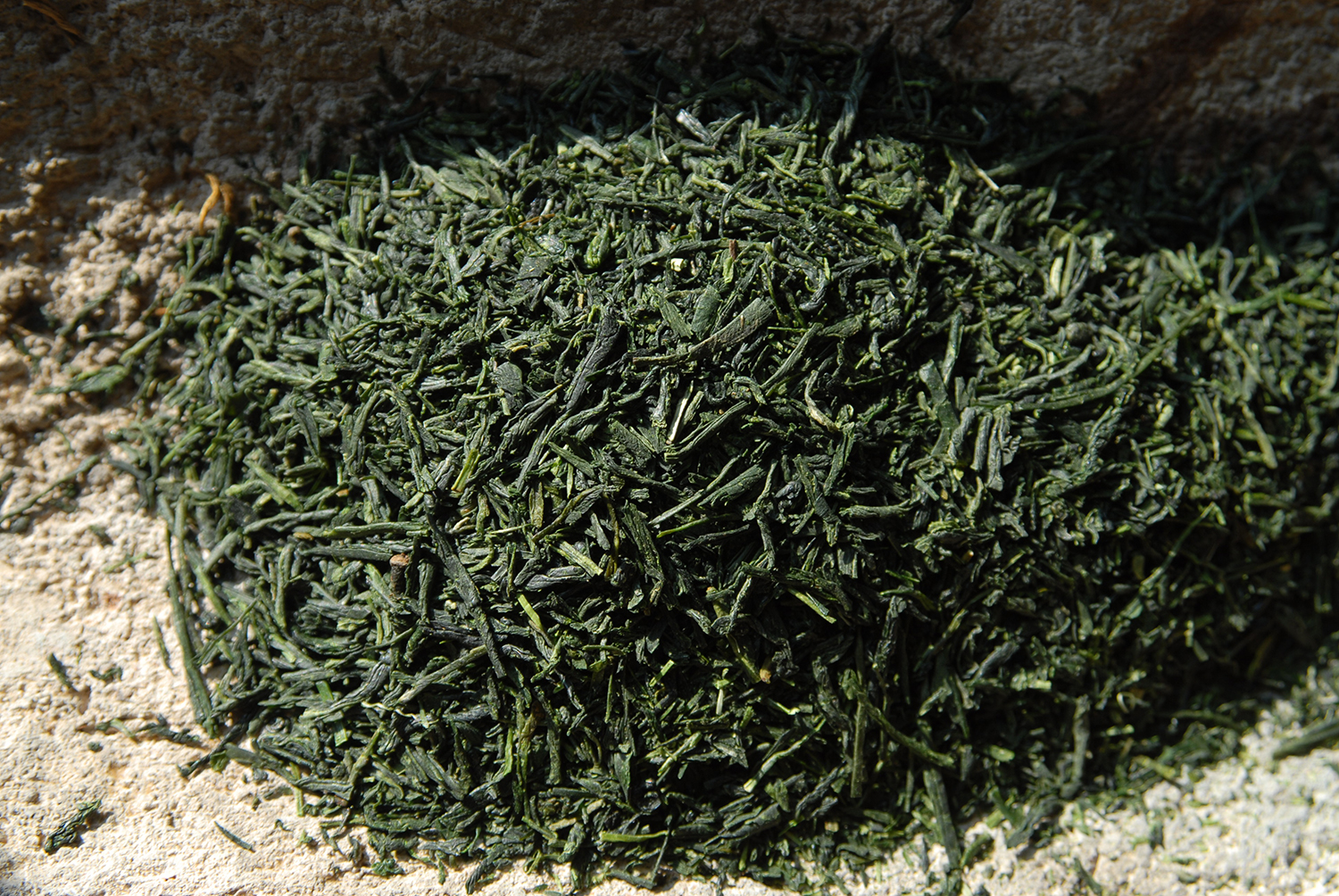 gyokuro shiun japanese green tea